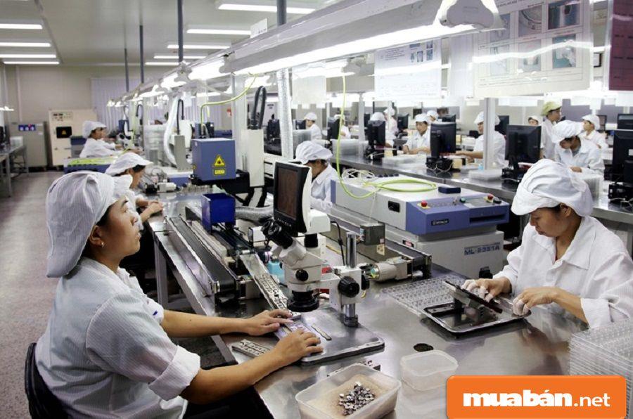 Mỗi công ty, doanh nghiệp thường có mục đích sử dụng lao động phổ thông khác nhau.