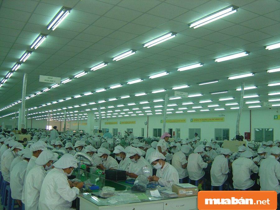 Tìm việc làm lao động phổ thông tại TPHCM