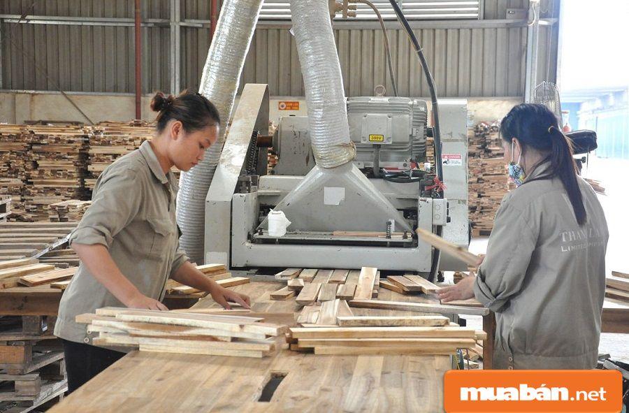 Có nguồn nhiên liệu, diện tích trồng rừng lớn, nên tỉnh có thế mạnh về ngành gỗ.
