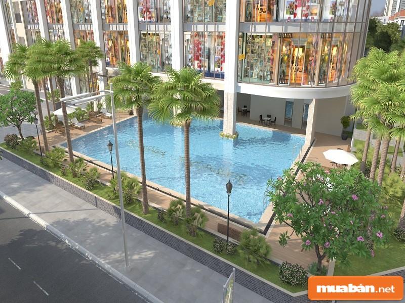 Bể bơi của dự án