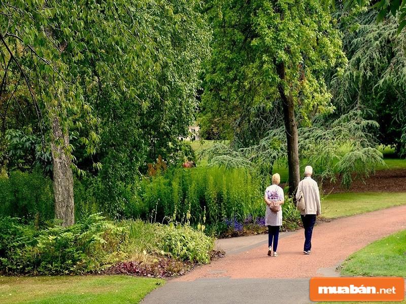 Mega City sở hữu không gian sống xanh