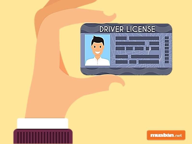 Tìm việc lái xe quận Tân Phú dựa theo hạng giấy phép lái xe