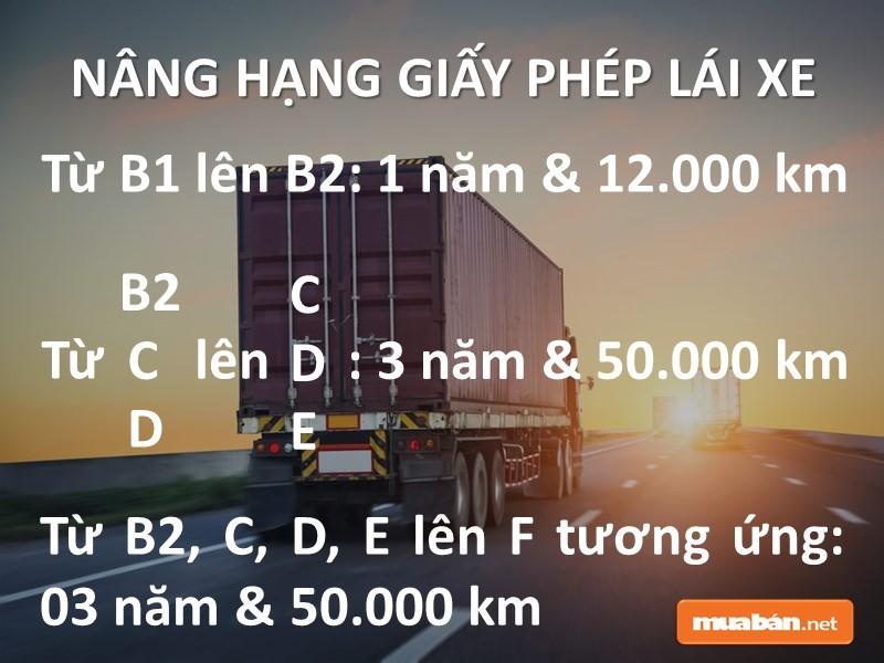 Nâng hạng GPLX để tìm việc lái xe quận Tân Phú đơn giản hơn