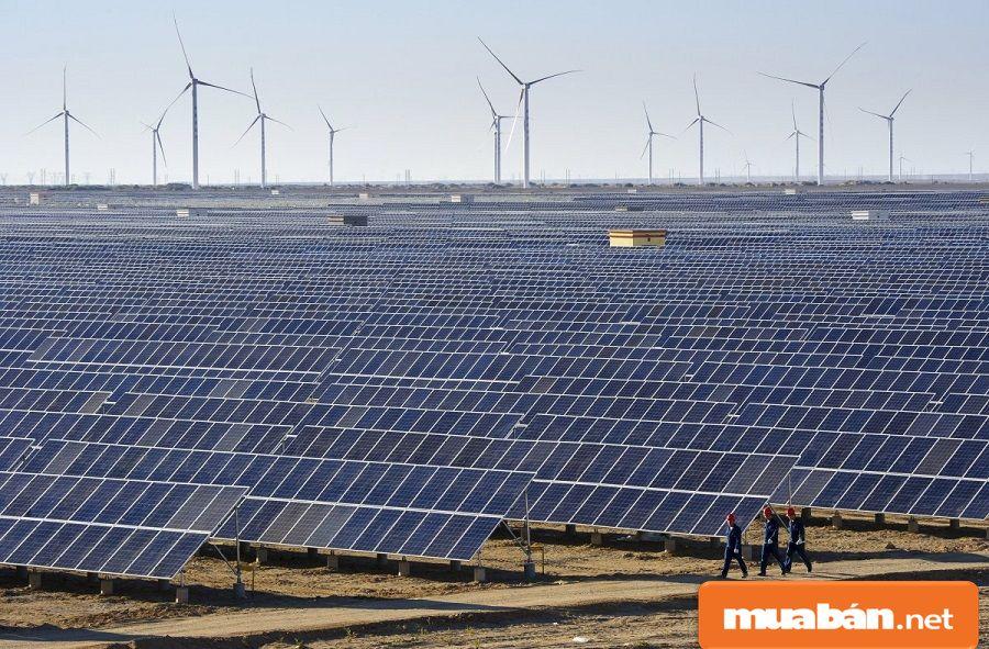 Dự án Nhà máy điện mặt trời VNECO – Vĩnh Long của Tổng công ty Cổ phần Xây dựng điện Việt Nam.