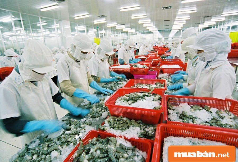 Nha Trang khá phong phú với cơ cầu nghề đa dạng như chế biến thực phẩm...