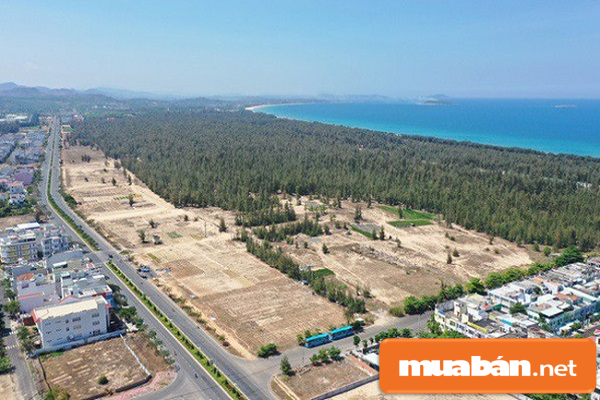 Bạn có quan tâm đến thị trường nhà đất Phú Yên?