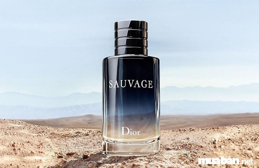 Dior Sauvage gồm nhiều tầng hương khác nhau