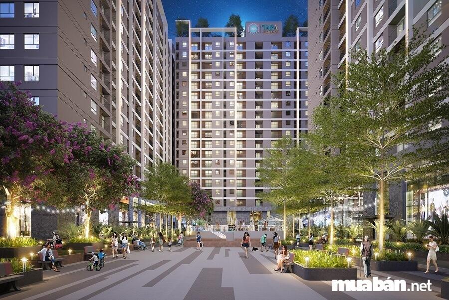 Dự án được xây dựng trên diện tích đất 6.169,0 m² với nhiều mảng xanh tiện ích