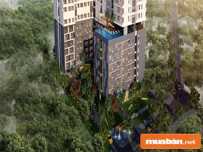 Dự án thuộc lá phổi xanh tươi của thành phố