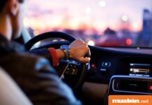 Tìm việc lái xe tại KCN Mỹ Phước, bạn cần biết 5 điều này!