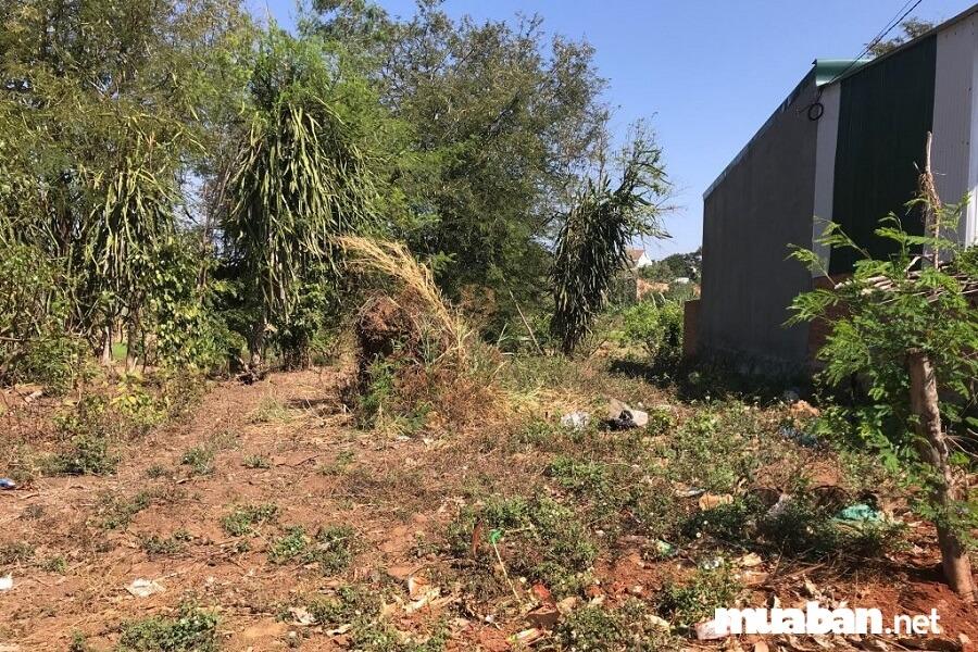 Mới đây, Hà Nội đã đưa ra bảng giá nhà đất tại thị xã Sơn Tây kèm theo các quyết định liên quan.