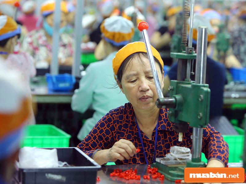 Người lớn tuổi vẫn có thể đi làm để kiếm thêm thu nhập cho bản thân