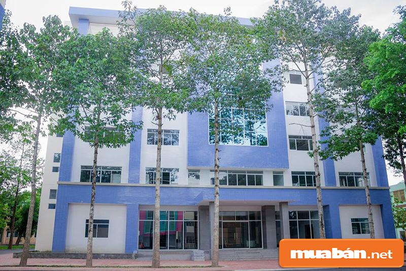 Trường Lilama 2