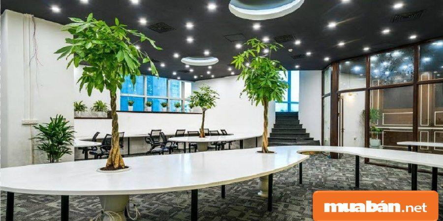 Được thiết kế theo kiến trúc hiện đại và tập trung vào xu hướng thiết kế không gian mở.