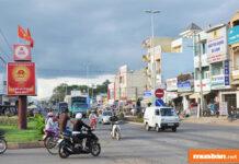 Mua bán đất mặt tiền Quốc lộ 20 huyện Di Linh, lợi nhuận tương lai