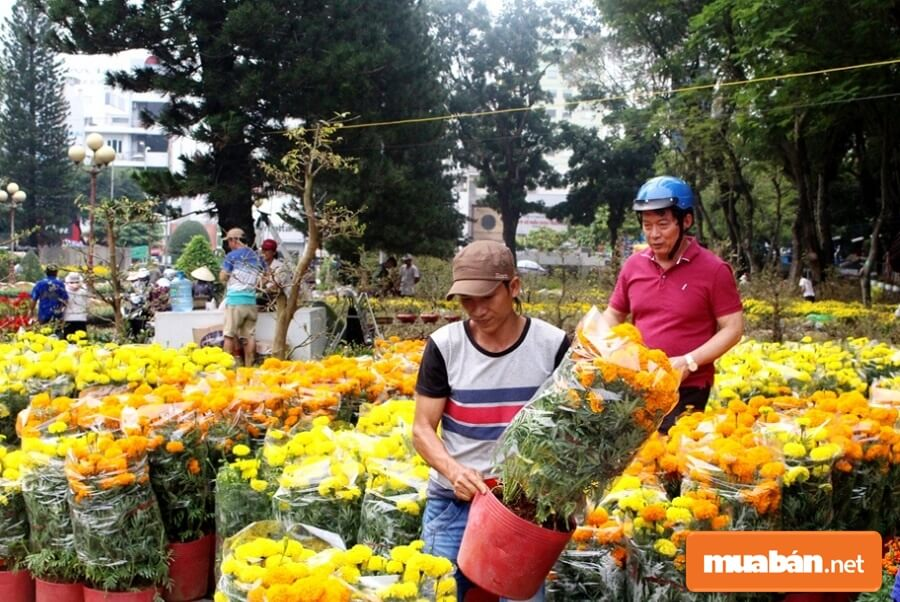 Việc làm Quy Nhơn cuối cùng mà chúng tôi muốn chia sẻ với bạn dịp Tết này đó chính là nhân viên phụ bán hoa, cây cảnh dịp Tết.