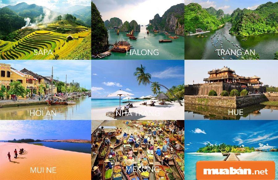 Tết nên đi du lịch ở đâu