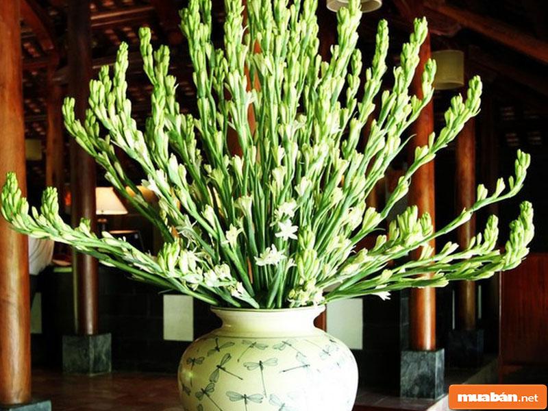 hoa đặt bàn thờ 05