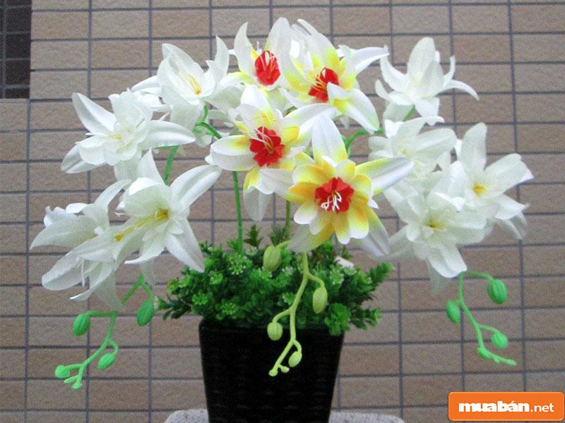 hoa đặt bàn thờ 24