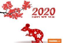 Năm 2020 là năm gì ? Bố mẹ tuổi nào nên sinh con năm 2020?