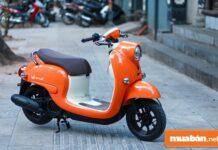 Xe máy 50cc Yamaha nên chọn các dòng xe nào?