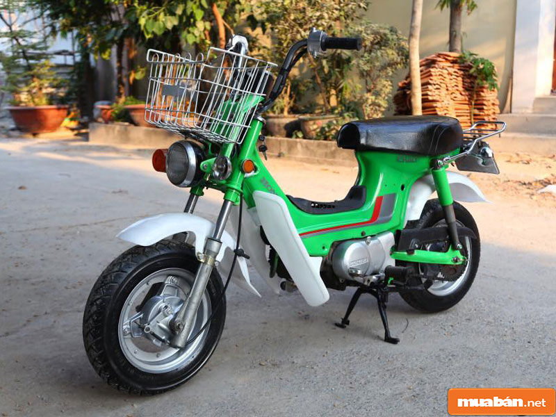 Honda Chaly Cf50 003