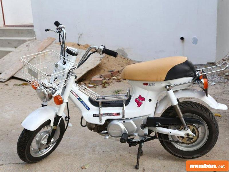 Honda Chaly Cf50 005