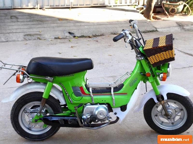 Honda Chaly Cf50 007