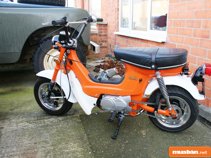 Honda Chaly Cf50 009