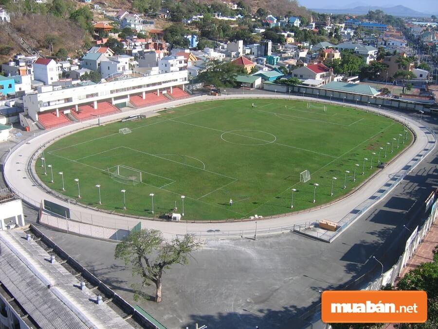 Sân vận động Lam Sơn Vũng Tàu là nơi duy nhất ở Việt Nam tổ chức đua chó.