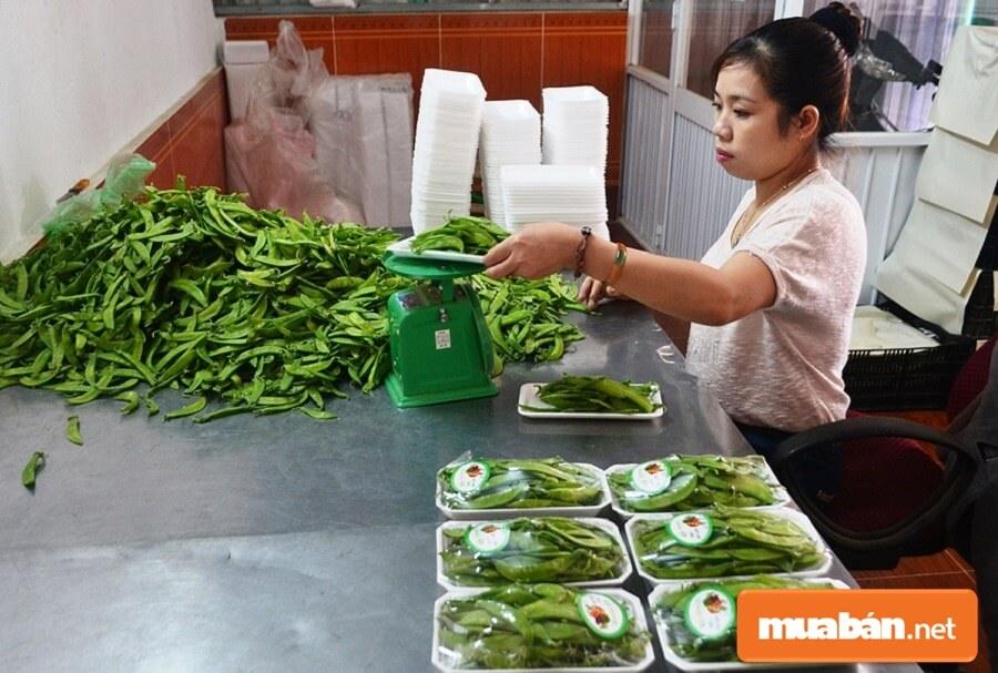 Nếu nhà bạn có vườn cây công nghiệp, có trồng rau xanh, các loại củ quả thì việc làm Đức Trọng hoàn hảo nhất trong mùa dịch chính là bán nông sản của gia đình mình.