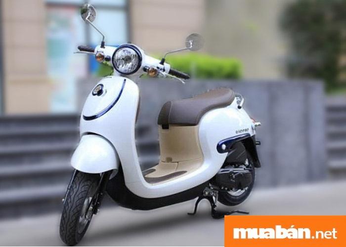 xe-may-50cc