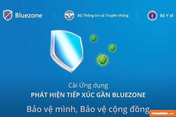 Bluezone 011