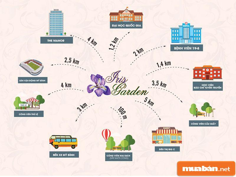 Iris Garden 19