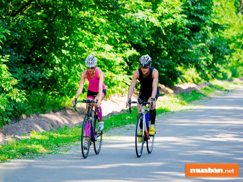 Bạn có thể dễ dàng tìm thấy cho mình những mẫu xe đạp giá rẻ ấn tượng