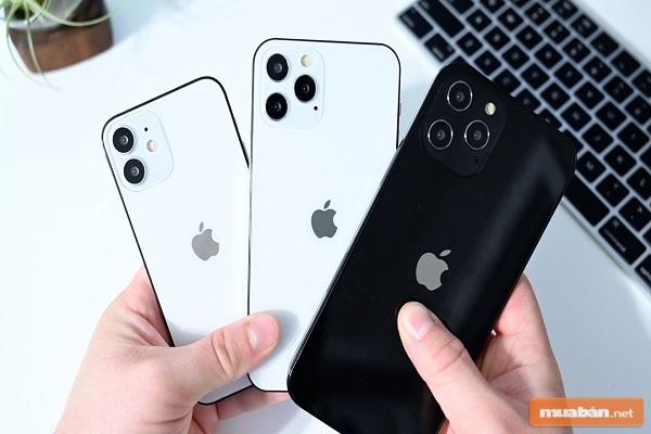 Cùng tìm hiểu cách check bảo hành iPhone nhanh chóng và chính xác nhất nhé