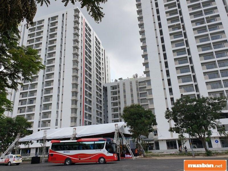 Công ty lựa chọn thị trường bất động sản Sài Gòn để hoạt động