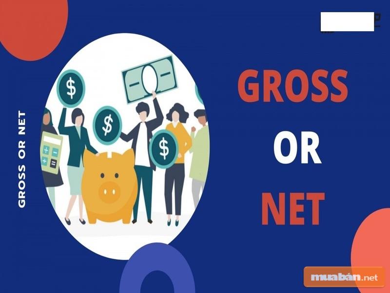 Lương Gross và lương Net là hai hình thức trả lương phổ biến hiện nay