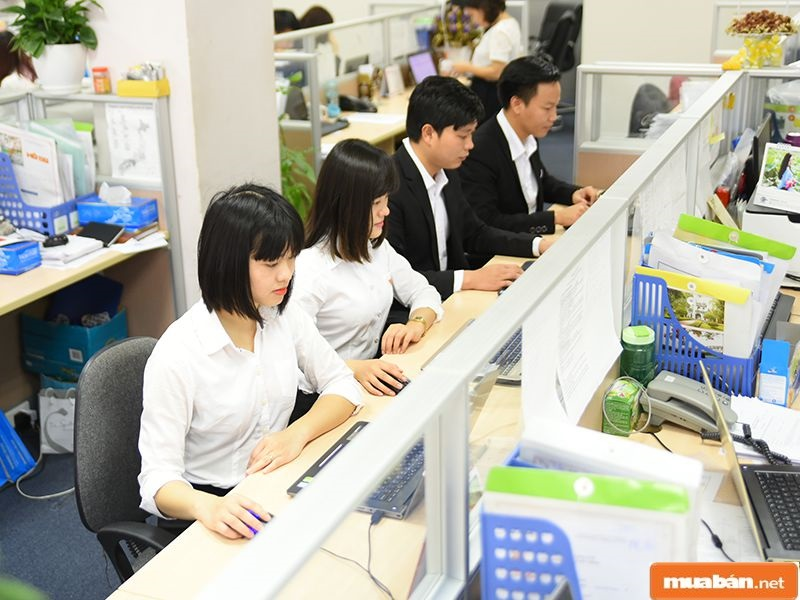 Những việc làm tiếng Nhật TPHCM đang ngày càng trở nên phổ biến