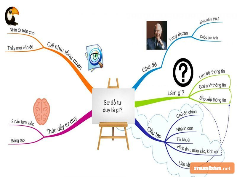 Sơ đồ tư duy sẽ giúp mọi người hệ thống hóa kiến thức hiệu quả