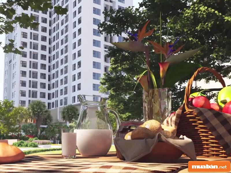An Bình City 05