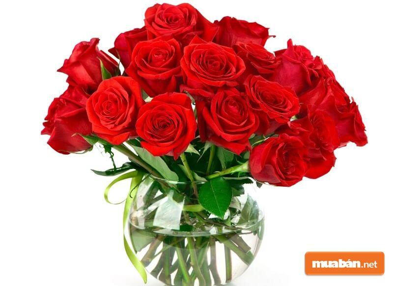 Cách Cắm Hoa Hồng Đỏ Đẹp