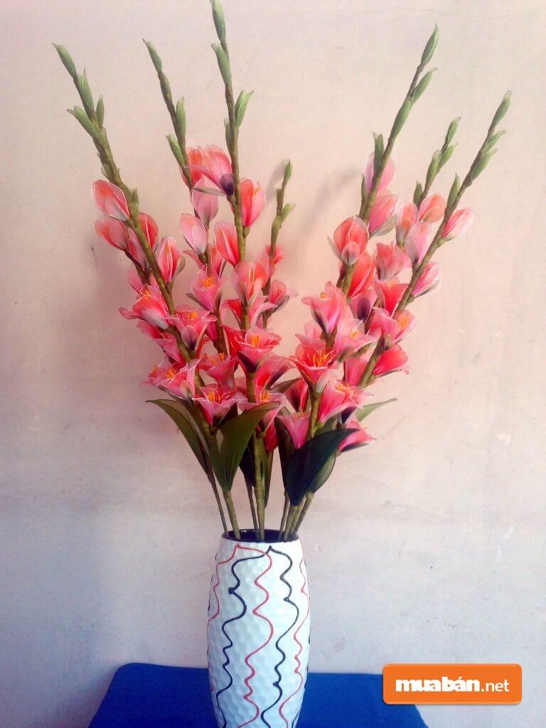 Hoa Lay Ơn Đẹp, Rất Thích Hợp Để Trưng Ngày Tết.