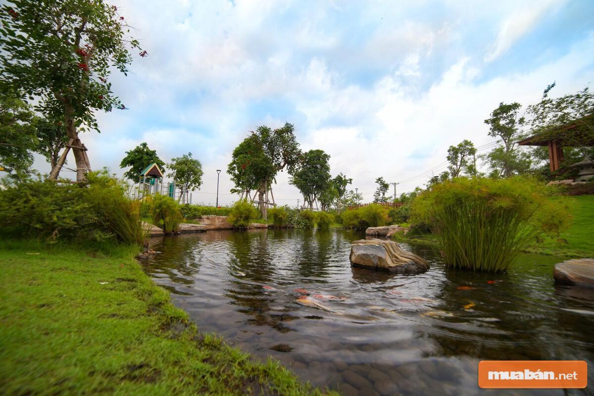Mật độ cây xanh lớn sẽ giúp môi trường sống của huyện Bình Chánh trở nên tuyệt vời hơn