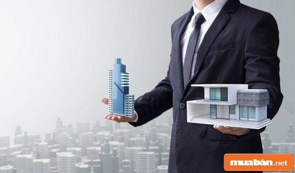 Kinh doanh bất động sản cần học những gì?