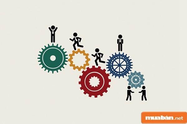 Quản trị nguồn nhân lực là gì? Cần rèn luyện kỹ năng nào?