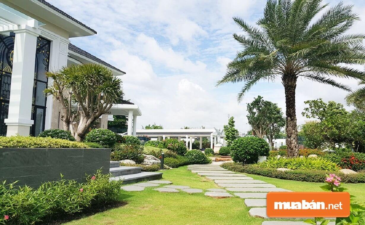 Sân vườn biệt thự thường rộng rãi nên gia chủ có thể thỏa sức sáng tạo.