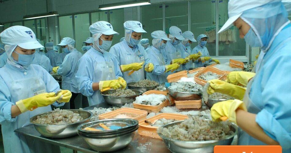 Mẹo việc làm Phú Yên tại nhà giữa mùa dịch