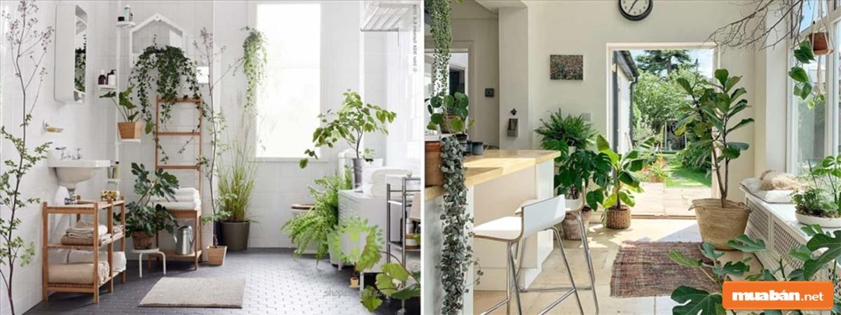 Chỉ cần giữ không gian sạch sẽ, căn nhà của bạn đã tuyệt vời hơn rất nhiều