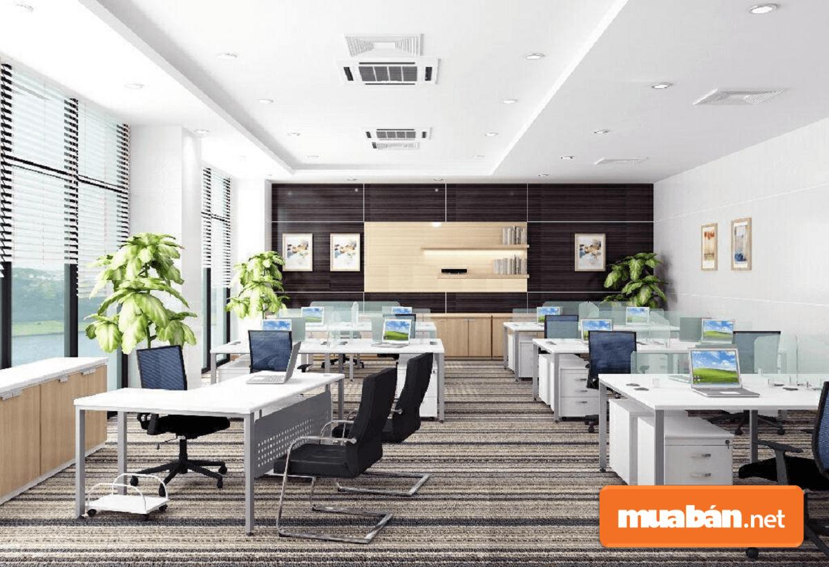 Ánh sáng tự nhiên trong phòng làm việc tạo cho nhân viên nguồn cảm hứng dồi dào